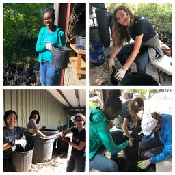 Gr. 8 Global Education Trip to New Orleans Explores Sustainable Cities and Communities